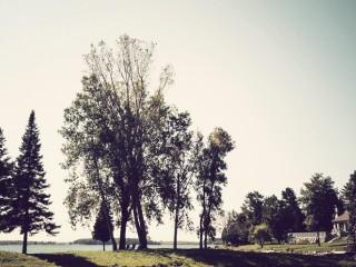 Moulinette Island
